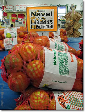 Oranges for sale, Venice Florida